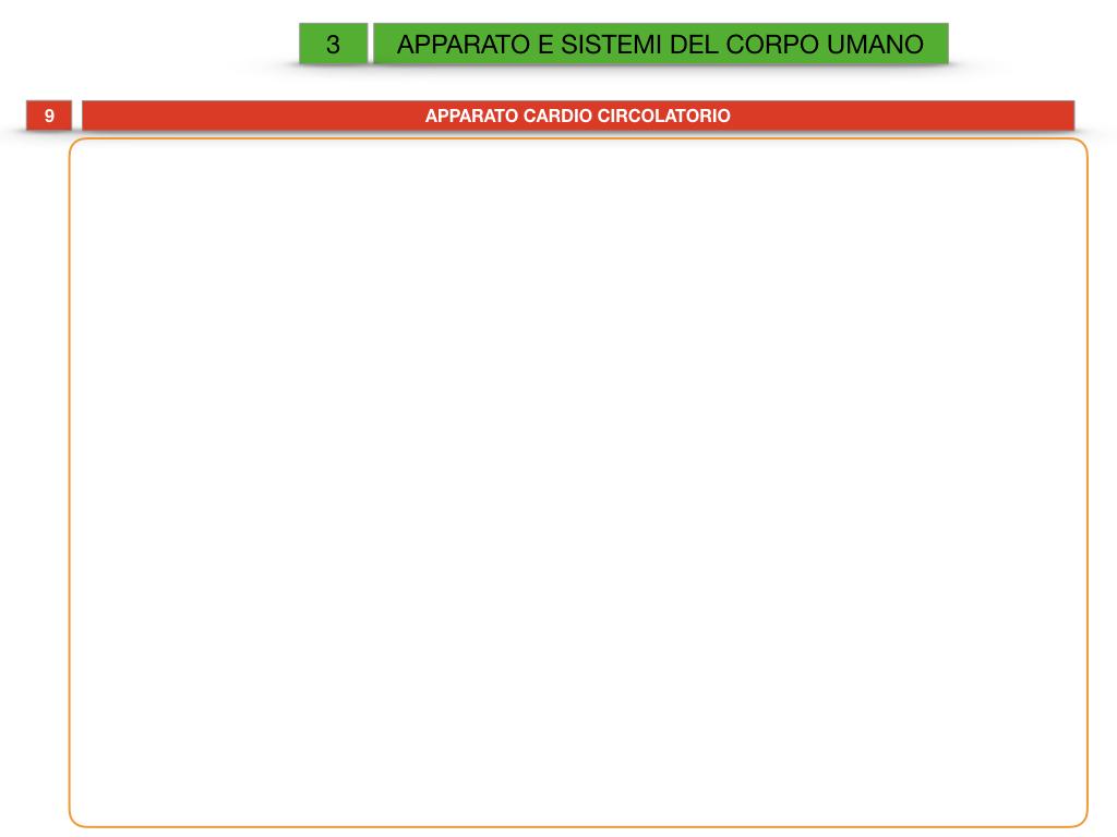 2. SCIENZE_APPARATI E SISTEMI_SIMULAZIONE.070