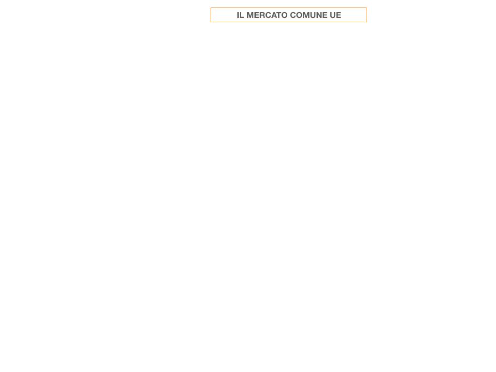 6. IL MERCATO COMUNE_SIMULAZIONE.001