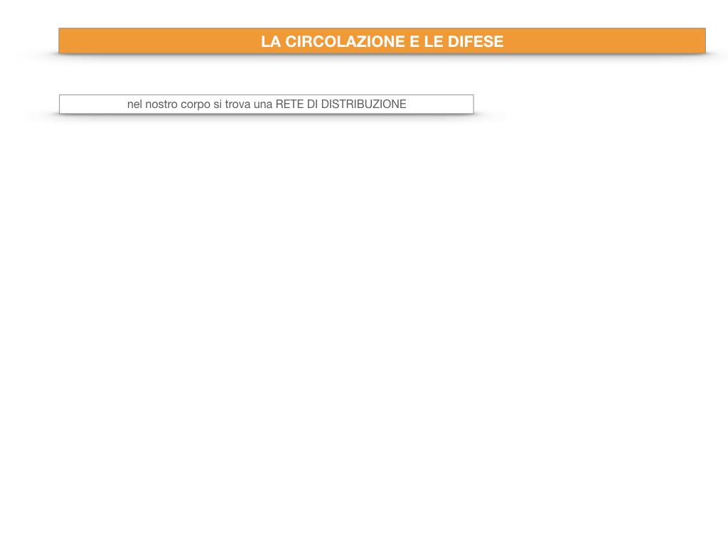 13. CIRCOLAZIONE E DIFESE_SIMULAZIONE.003