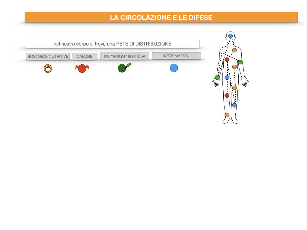 13. CIRCOLAZIONE E DIFESE_SIMULAZIONE.012