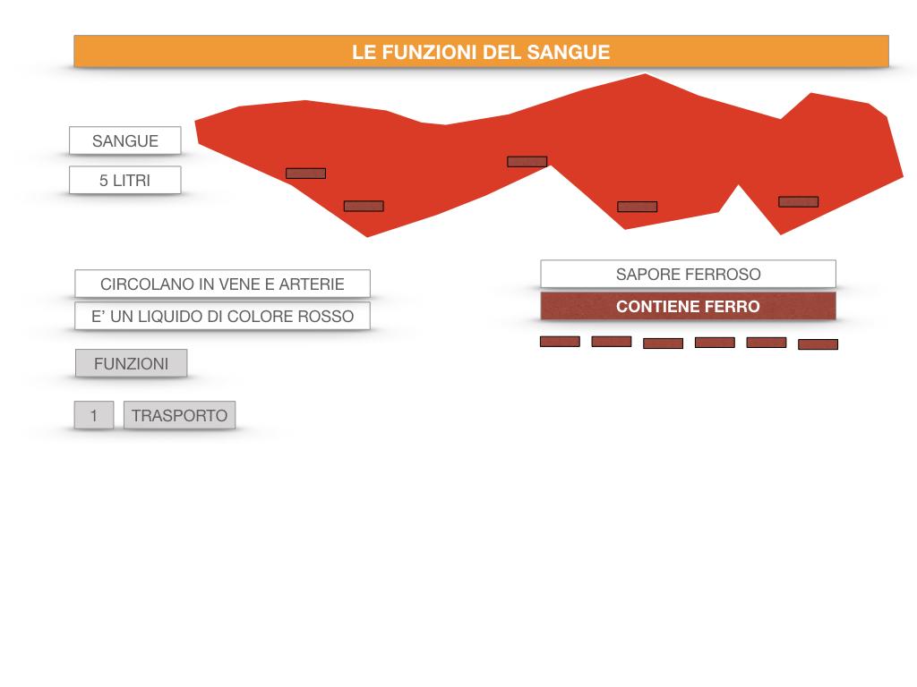 13. CIRCOLAZIONE E DIFESE_SIMULAZIONE.046