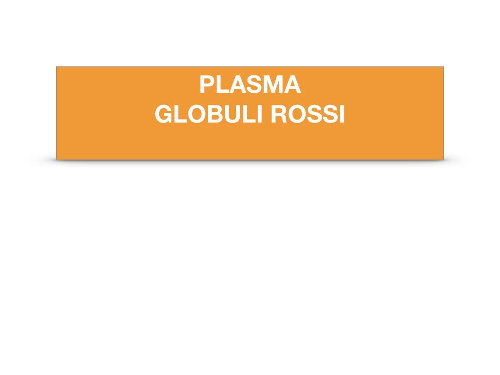 14. PLASMA _GLOBULI ROSSI_SIMULAZIONE.002