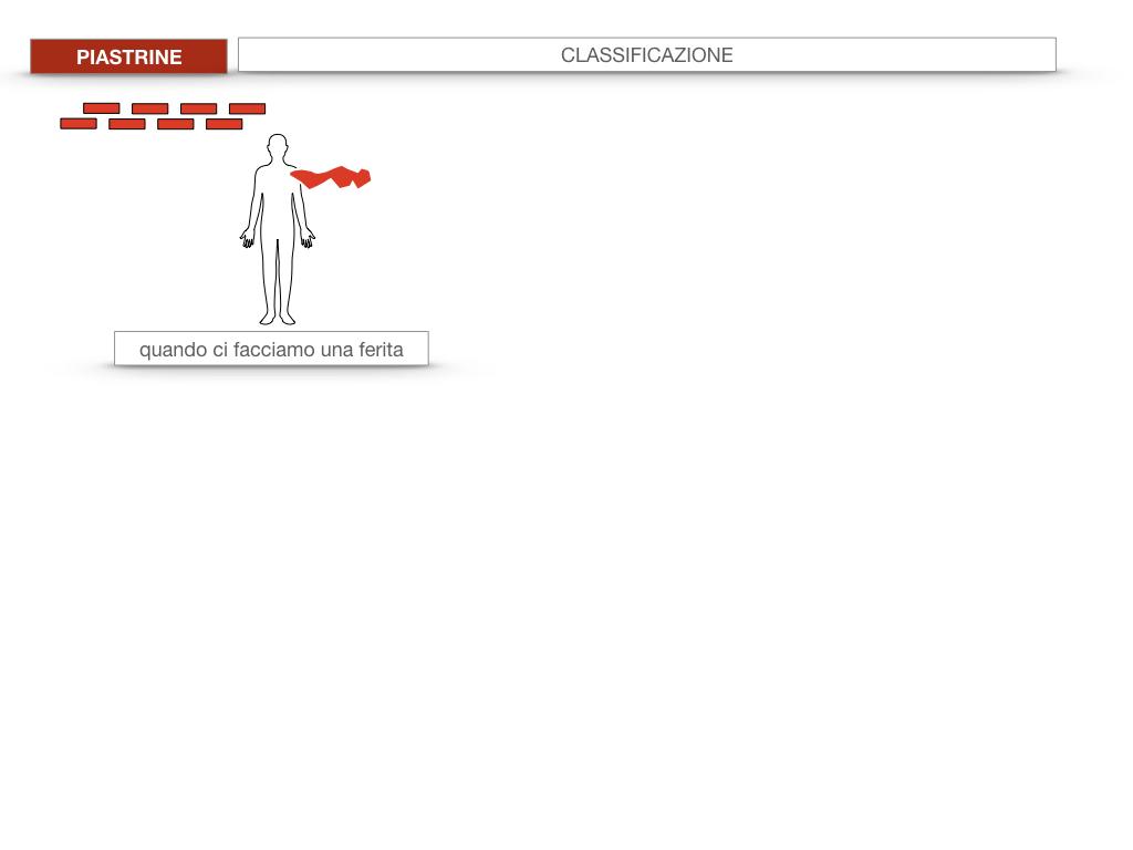 16. PIASTRINE CELLULE STAMINALI_SIMULAZIONE.004