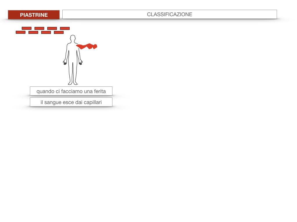 16. PIASTRINE CELLULE STAMINALI_SIMULAZIONE.005