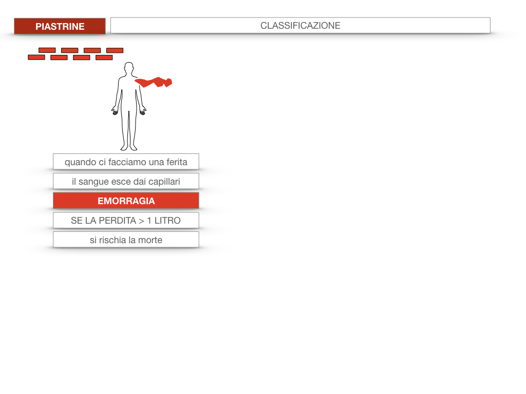 16. PIASTRINE CELLULE STAMINALI_SIMULAZIONE.008