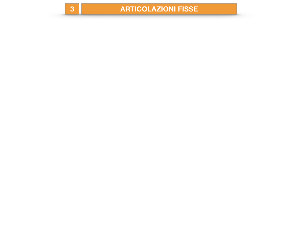 10. LE ARTICOLAZIONI_SEMIMOBILI_FISSE_SIMULAZIONE.008