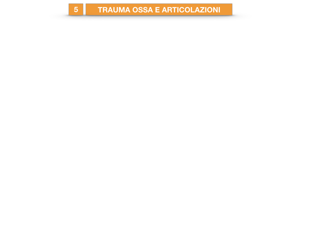 10. LE ARTICOLAZIONI_SEMIMOBILI_FISSE_SIMULAZIONE.034