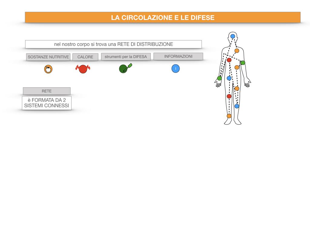 13. CIRCOLAZIONE E DIFESE_SIMULAZIONE.013