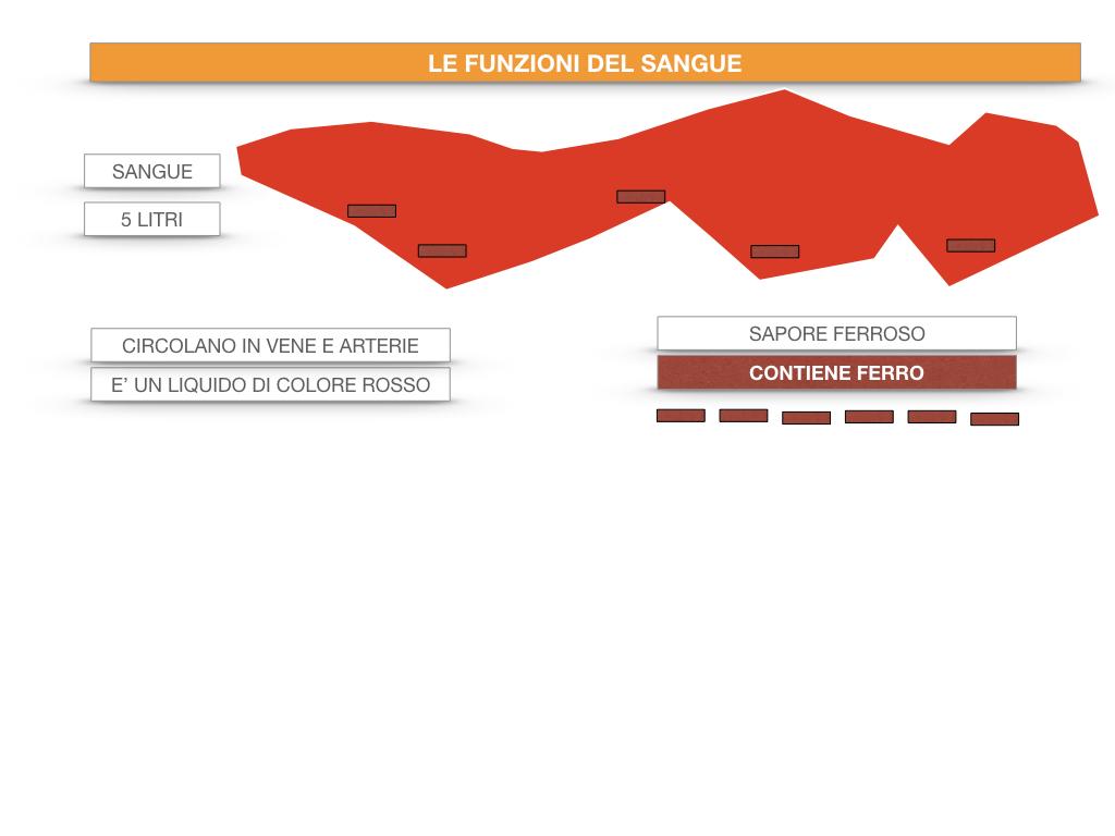 13. CIRCOLAZIONE E DIFESE_SIMULAZIONE.044