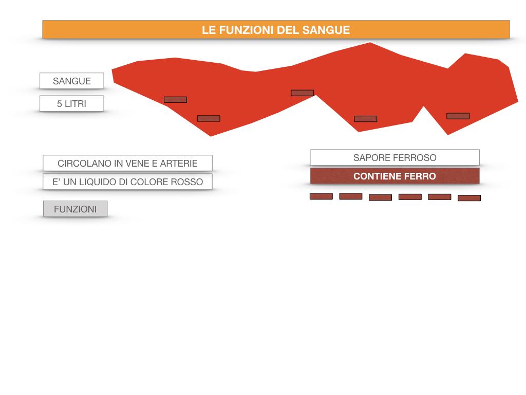 13. CIRCOLAZIONE E DIFESE_SIMULAZIONE.045