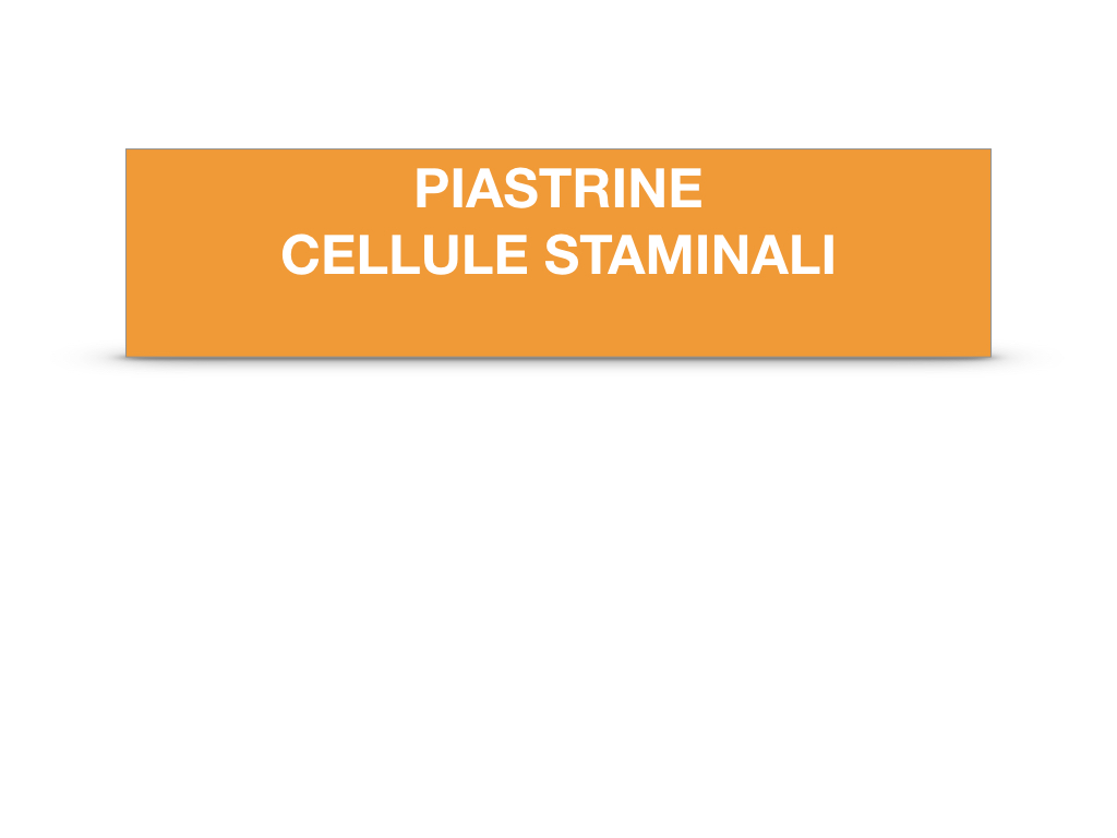 16. PIASTRINE CELLULE STAMINALI_SIMULAZIONE.002