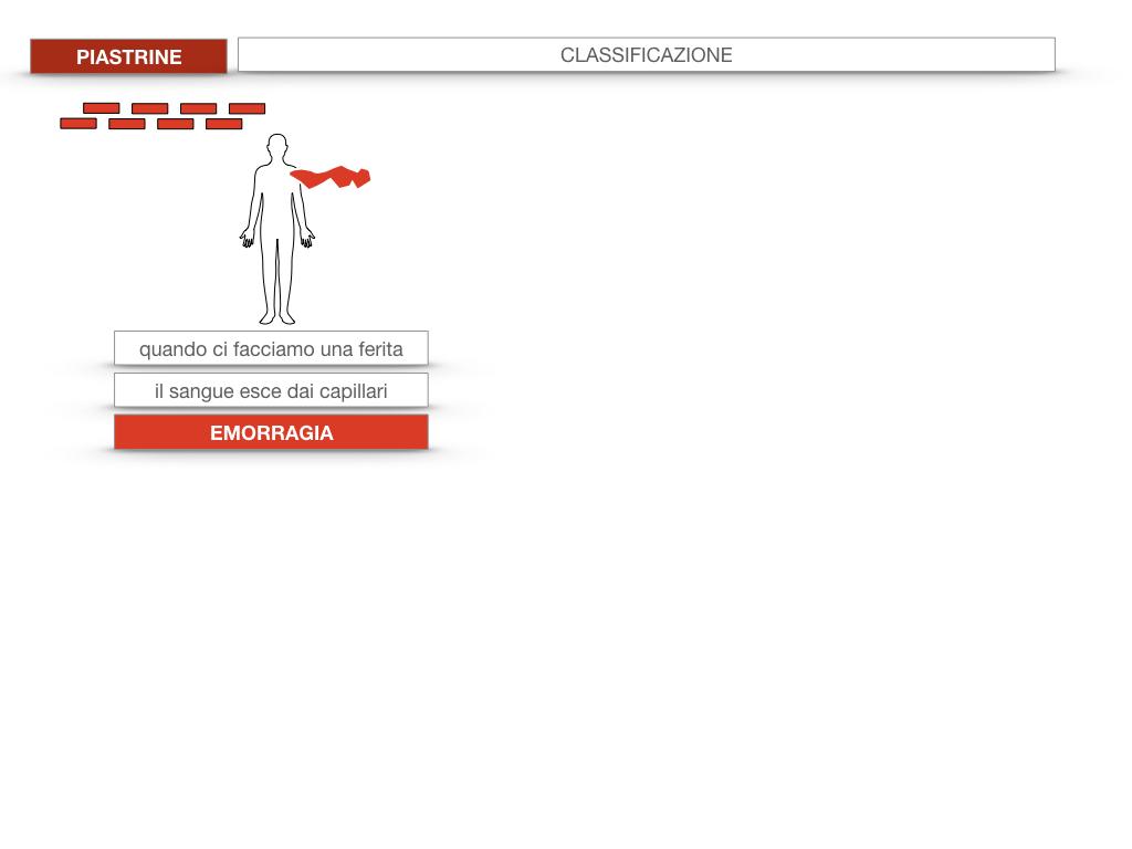 16. PIASTRINE CELLULE STAMINALI_SIMULAZIONE.006