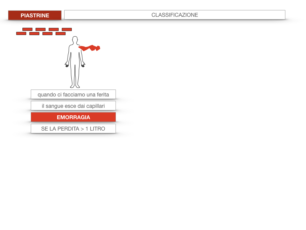 16. PIASTRINE CELLULE STAMINALI_SIMULAZIONE.007