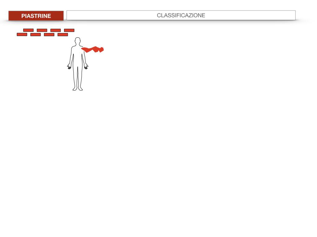 16. PIASTRINE CELLULE STAMINALI_SIMULAZIONE.021