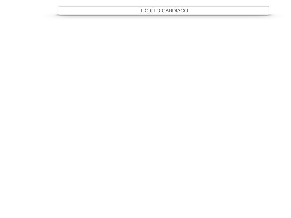 18. CICLO CARDIACO_SIMULAZIONE.002