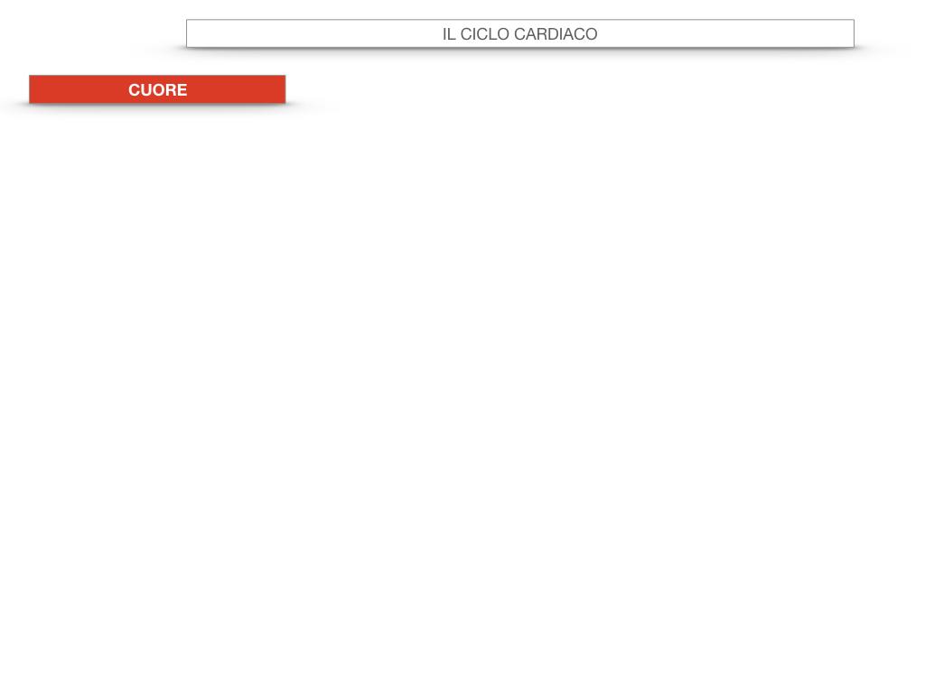 18. CICLO CARDIACO_SIMULAZIONE.003