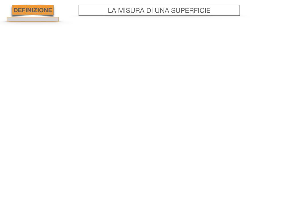 2. LA MISURA DI UNA SUPERFICIE_SIMULAZIONE.018