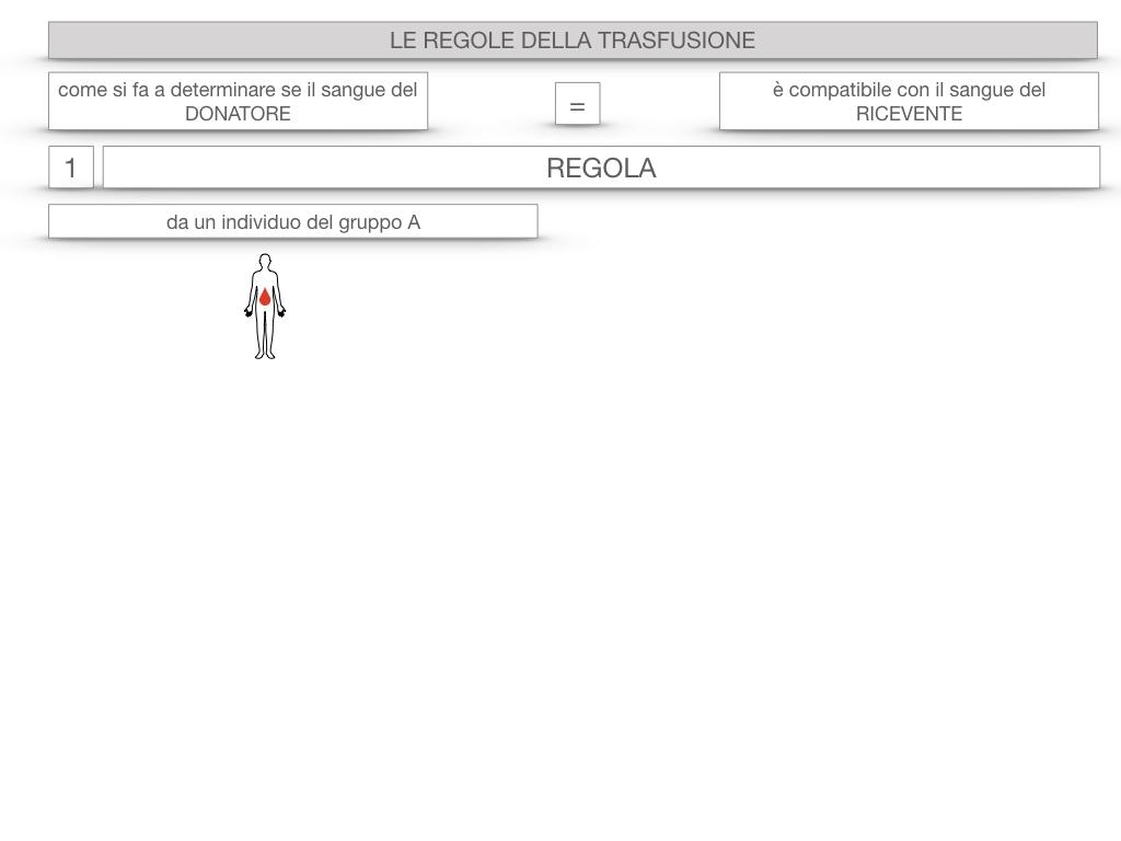 22. LE REGOLE DELLA TRASFUSIONE_SIMULAZIONE.006