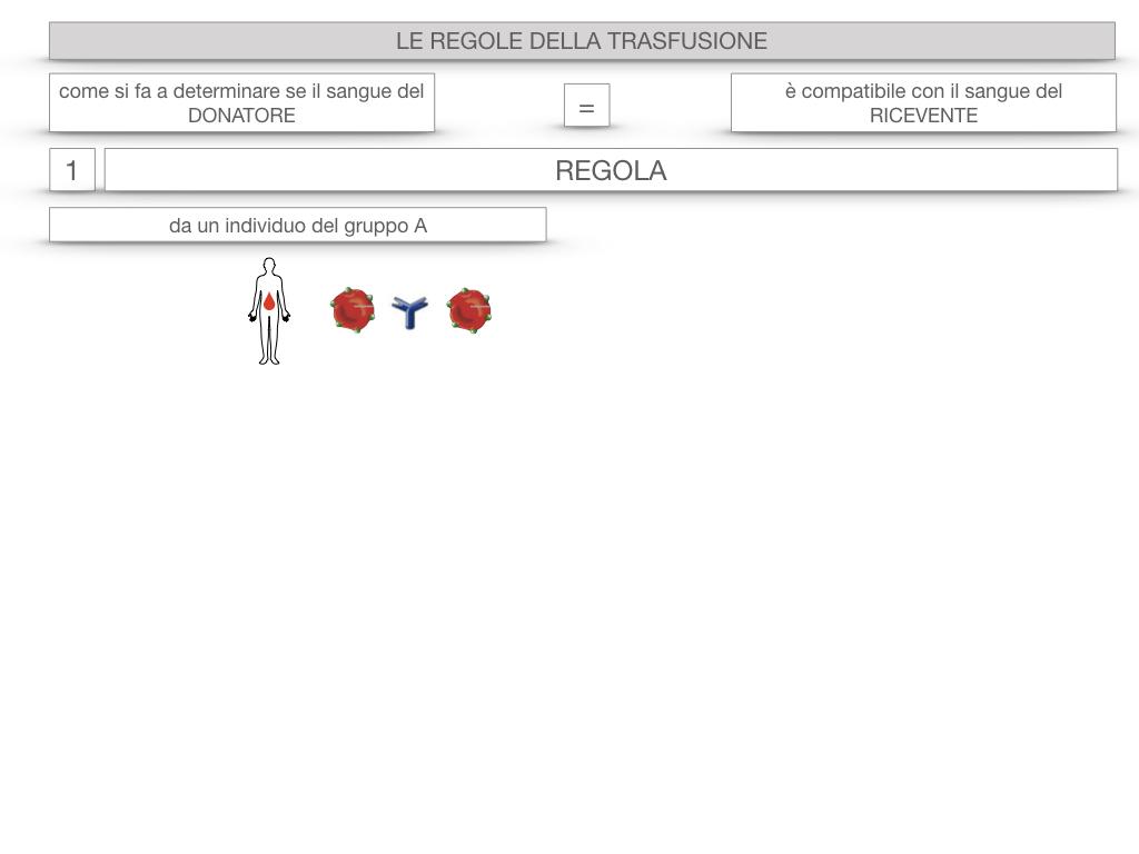 22. LE REGOLE DELLA TRASFUSIONE_SIMULAZIONE.007