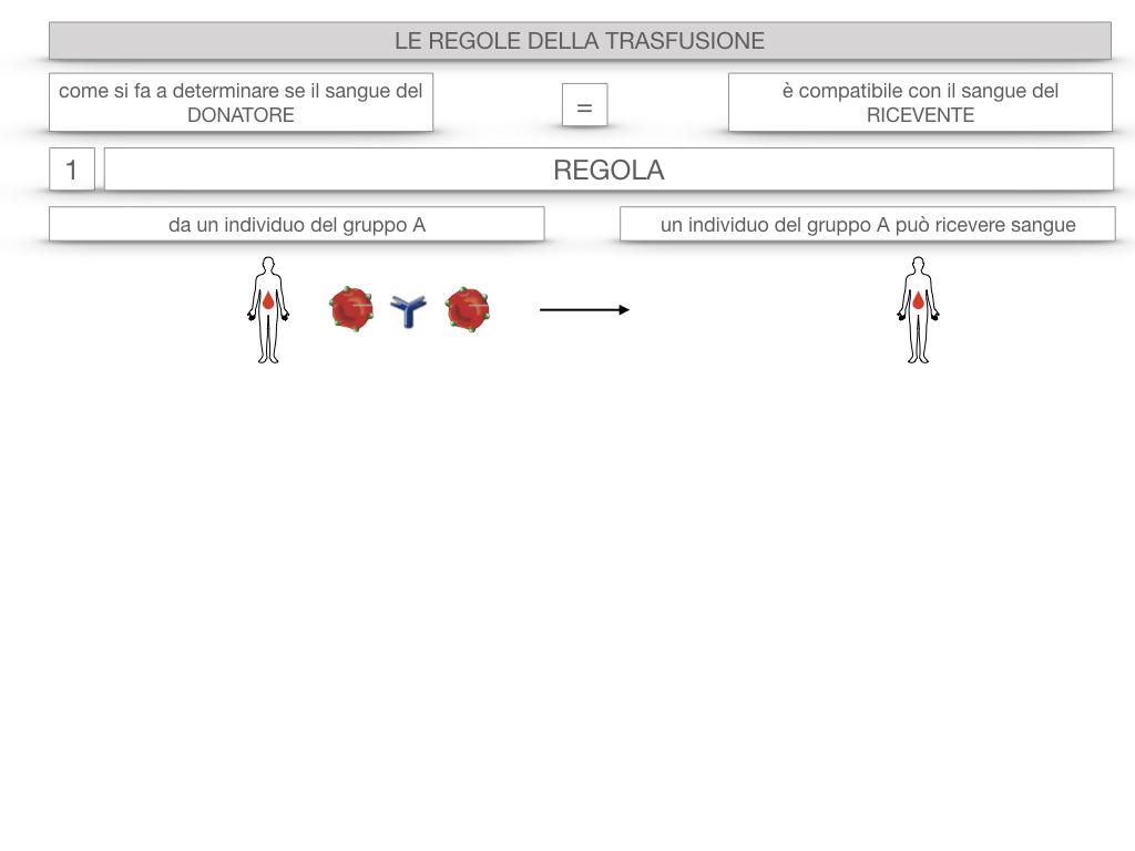 22. LE REGOLE DELLA TRASFUSIONE_SIMULAZIONE.008