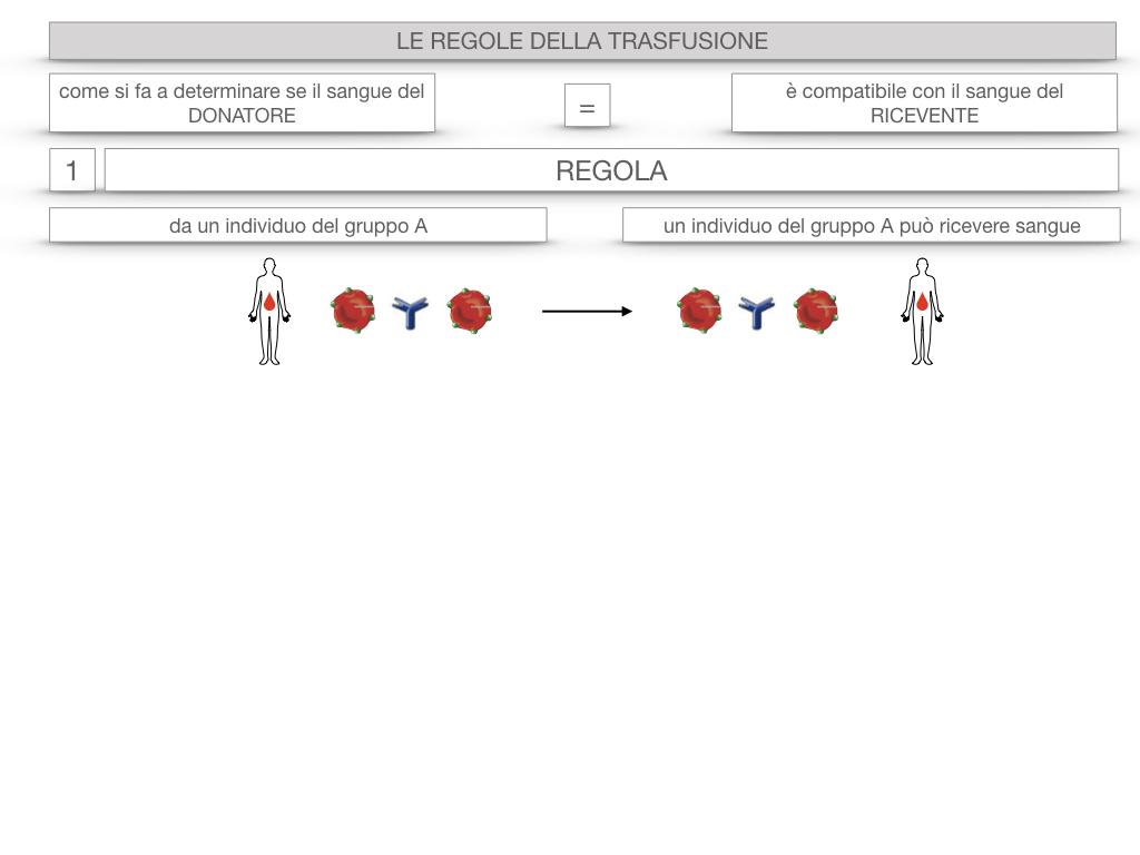 22. LE REGOLE DELLA TRASFUSIONE_SIMULAZIONE.009