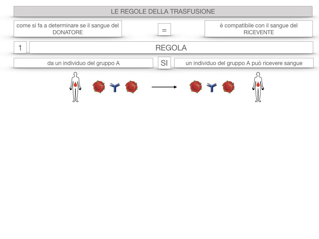 22. LE REGOLE DELLA TRASFUSIONE_SIMULAZIONE.010