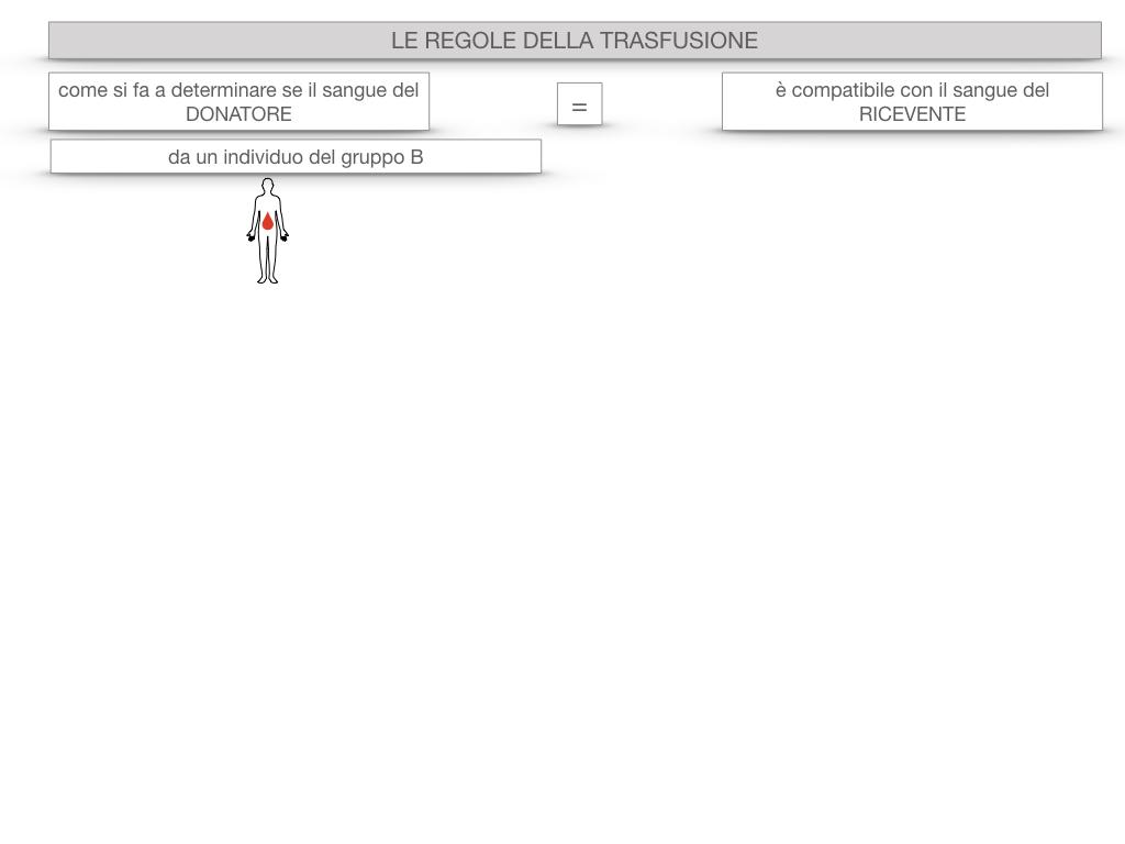 22. LE REGOLE DELLA TRASFUSIONE_SIMULAZIONE.014