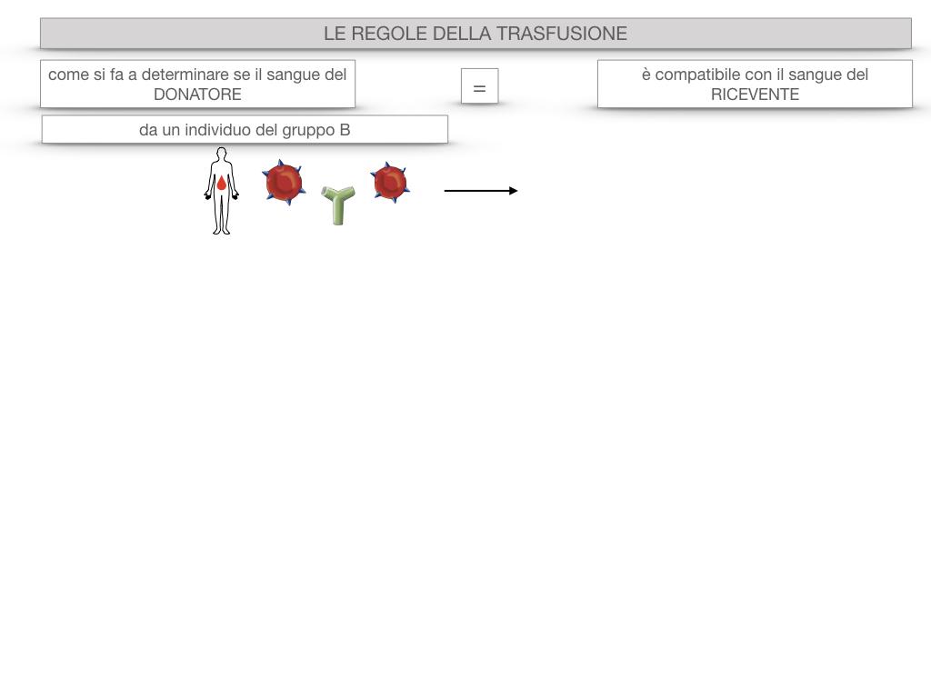 22. LE REGOLE DELLA TRASFUSIONE_SIMULAZIONE.015