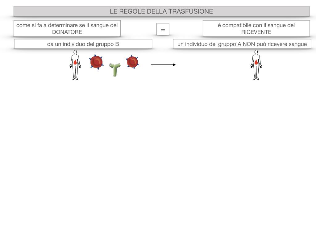 22. LE REGOLE DELLA TRASFUSIONE_SIMULAZIONE.016