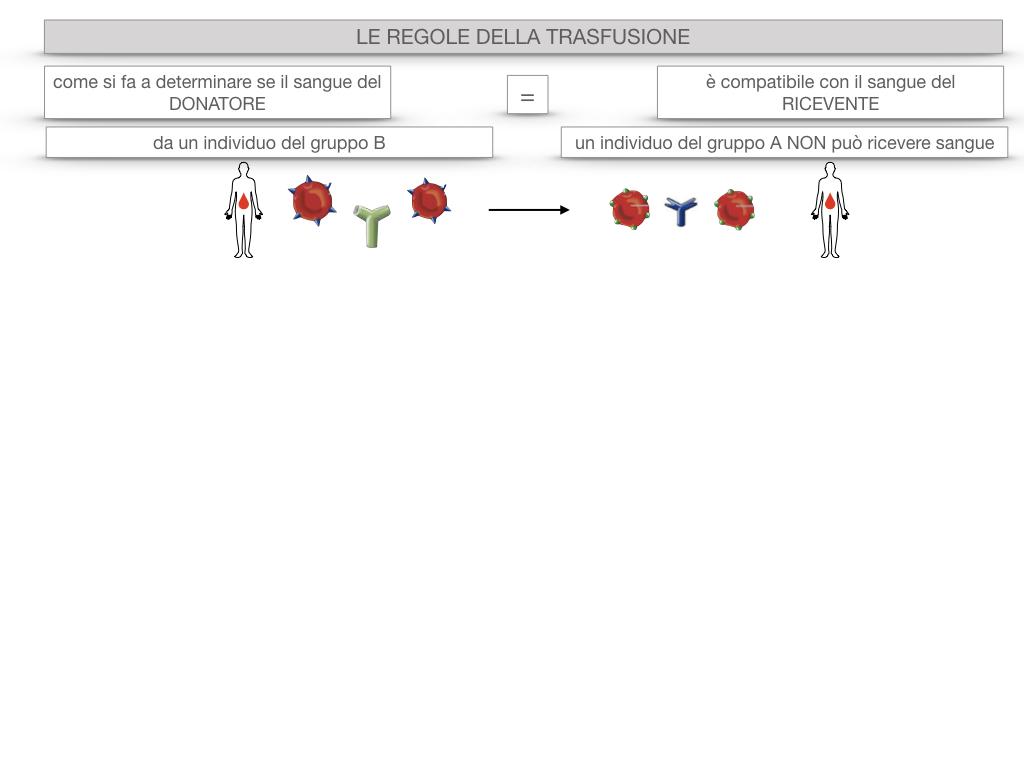 22. LE REGOLE DELLA TRASFUSIONE_SIMULAZIONE.017