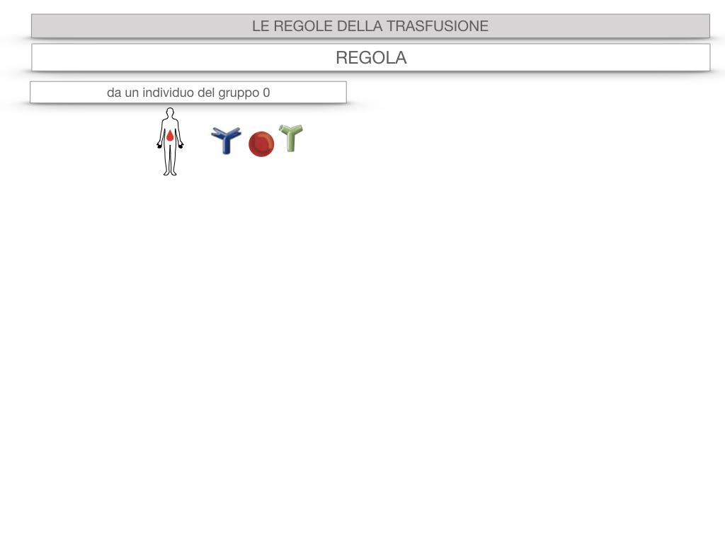 22. LE REGOLE DELLA TRASFUSIONE_SIMULAZIONE.031