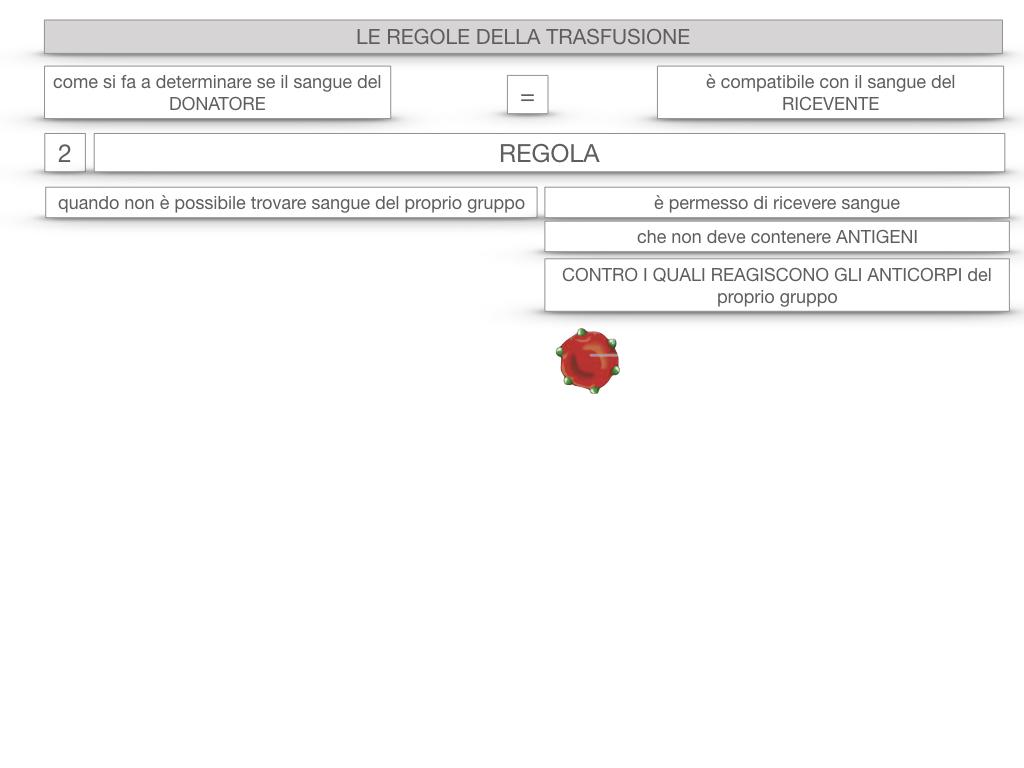 22. LE REGOLE DELLA TRASFUSIONE_SIMULAZIONE.055