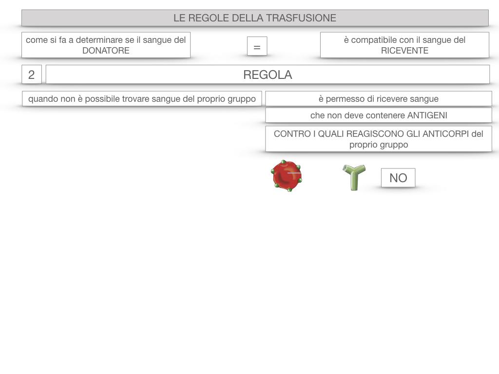 22. LE REGOLE DELLA TRASFUSIONE_SIMULAZIONE.057
