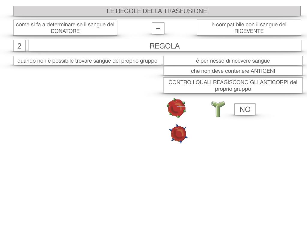 22. LE REGOLE DELLA TRASFUSIONE_SIMULAZIONE.058