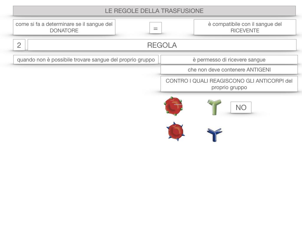 22. LE REGOLE DELLA TRASFUSIONE_SIMULAZIONE.059