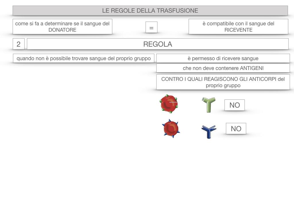 22. LE REGOLE DELLA TRASFUSIONE_SIMULAZIONE.060