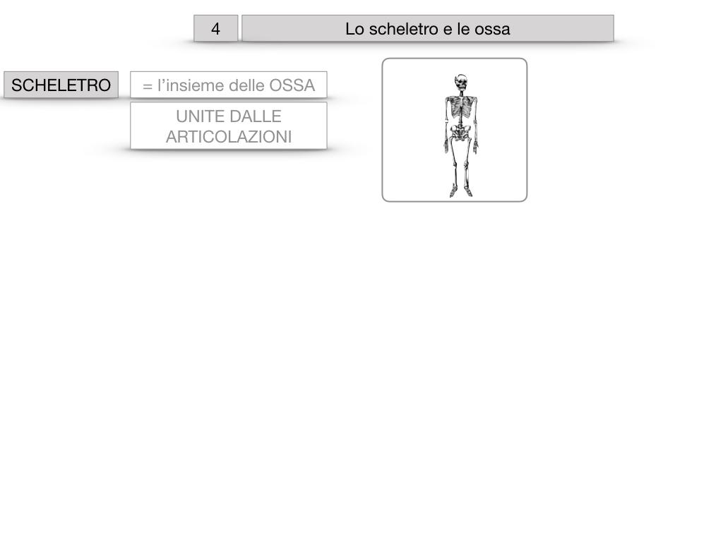 4. SCIENZE_LO SCHELETRO E LE OSSA_SIMULAZIONE.004