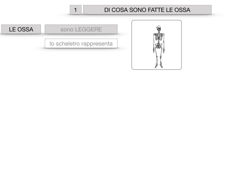 5. SCIENZE_COMPOSIZIONE E FORMA DELLE OSSA_SIMULAZIONE.003