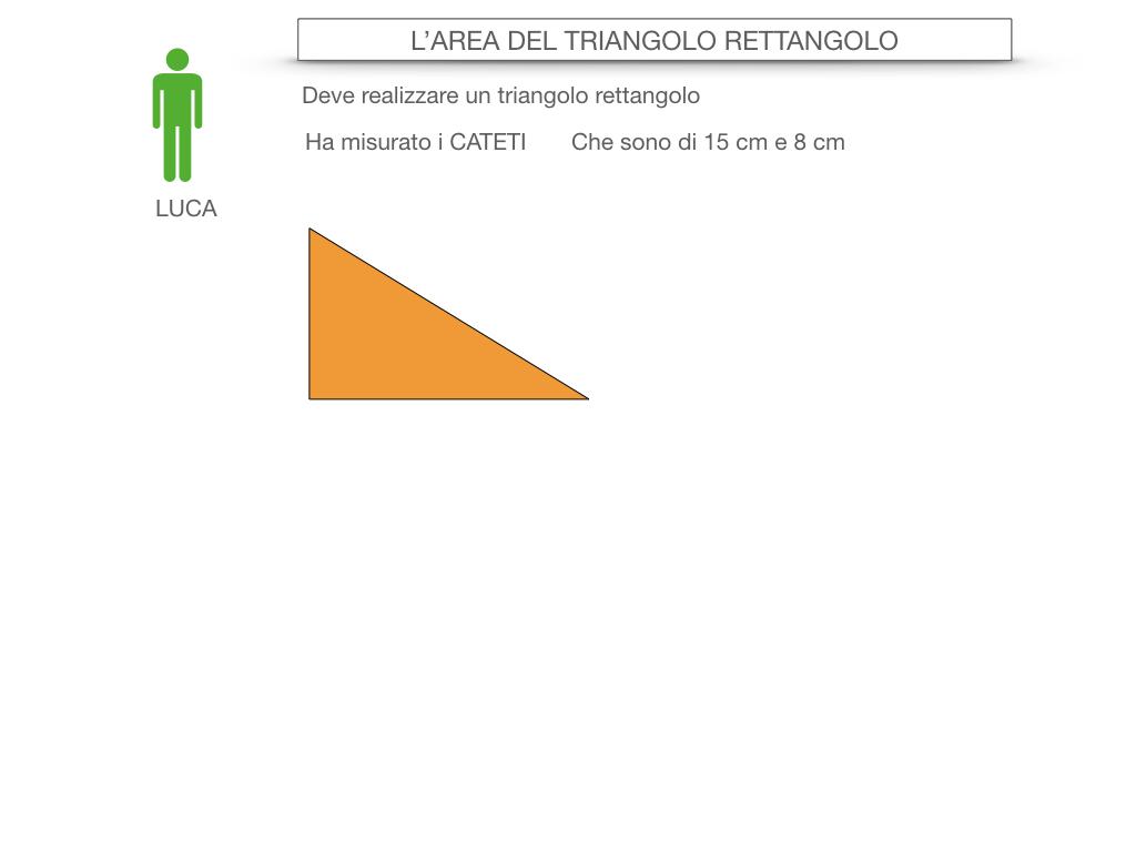 7. L'AREA DEL TRIANGOLO_RETTANGOLO_SIMULAZIONE.005