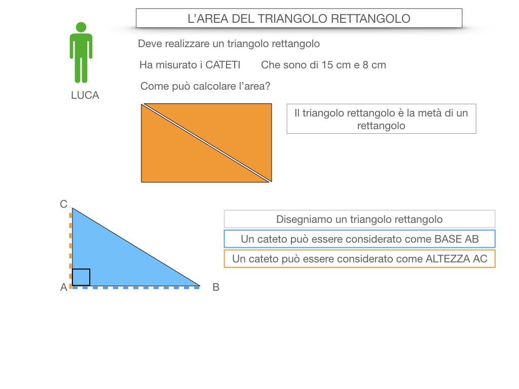 7. L'AREA DEL TRIANGOLO_RETTANGOLO_SIMULAZIONE.010