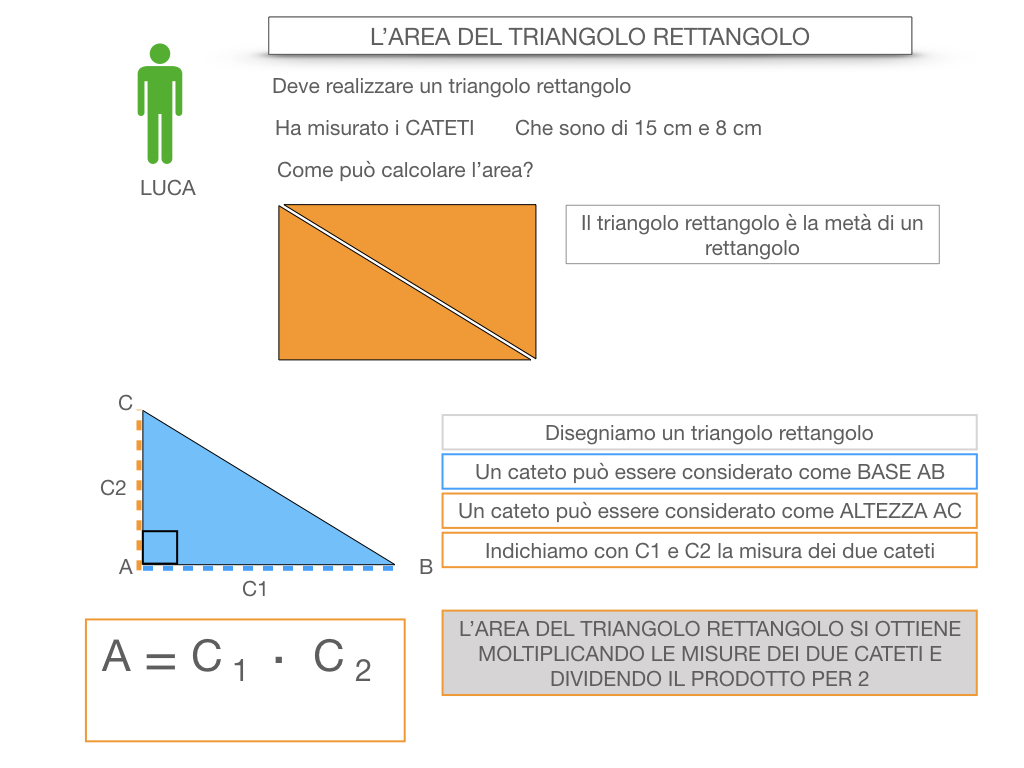 7. L'AREA DEL TRIANGOLO_RETTANGOLO_SIMULAZIONE.013