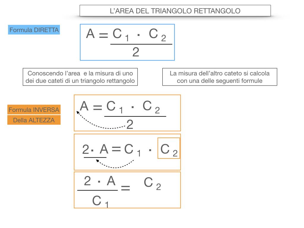 7. L'AREA DEL TRIANGOLO_RETTANGOLO_SIMULAZIONE.033