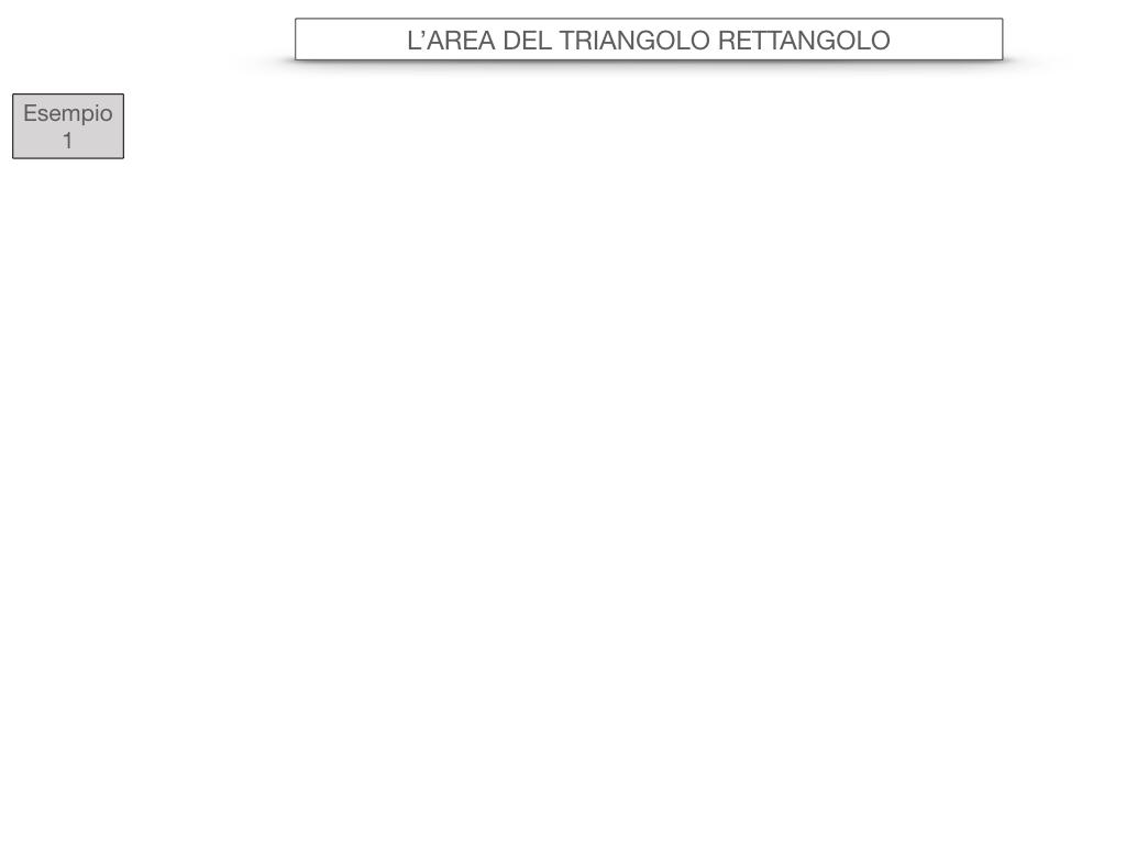 7. L'AREA DEL TRIANGOLO_RETTANGOLO_SIMULAZIONE.036
