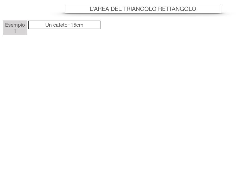 7. L'AREA DEL TRIANGOLO_RETTANGOLO_SIMULAZIONE.037