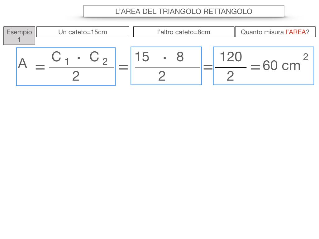 7. L'AREA DEL TRIANGOLO_RETTANGOLO_SIMULAZIONE.047