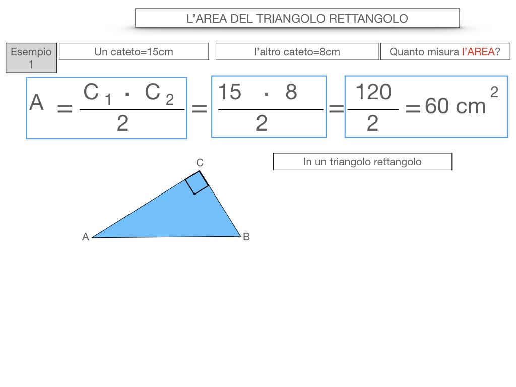 7. L'AREA DEL TRIANGOLO_RETTANGOLO_SIMULAZIONE.048