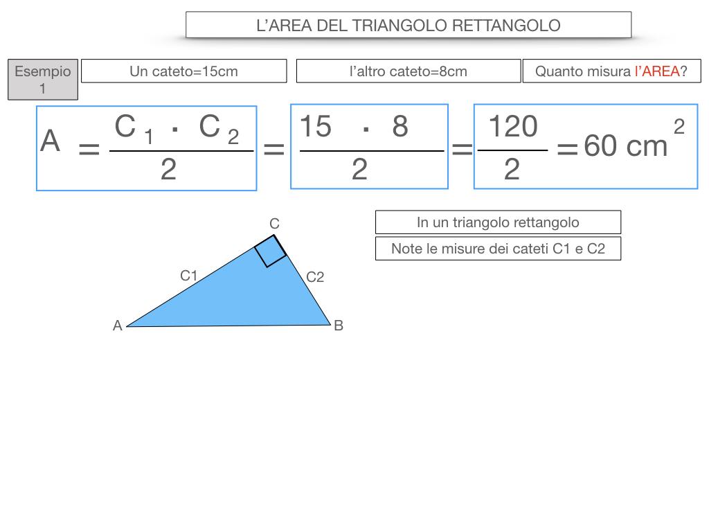 7. L'AREA DEL TRIANGOLO_RETTANGOLO_SIMULAZIONE.049