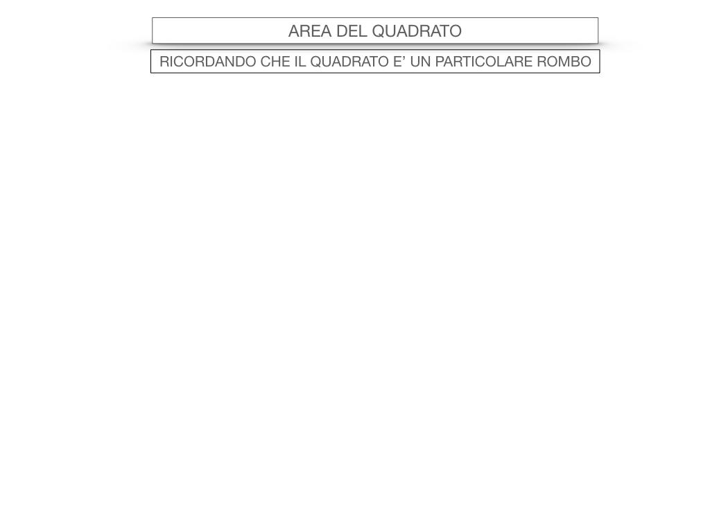 8. L'AREA DEL ROMBO_SIMULAZIONE.064