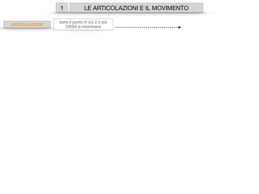 9. LE ARTICOLAZIONI_CARTACEO_SIMULAZIONE.002