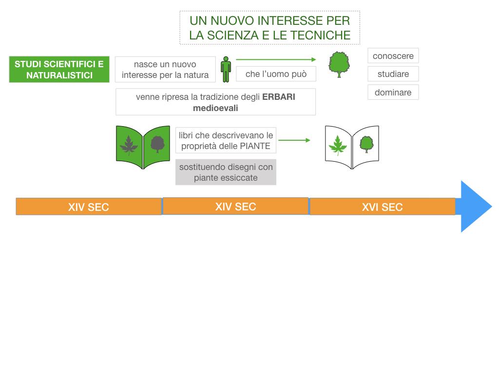 12. RINASCIMENTO_FRA ARTE E SCIENZA_ SIMULAZIONE.010